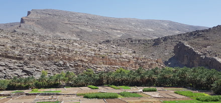 Hamra Oman Reise