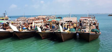 Masirah Island Oman Mietwagenrundreise